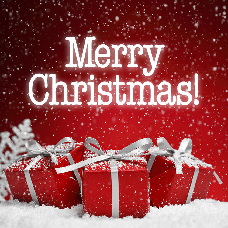 Merry Christmas EMSC