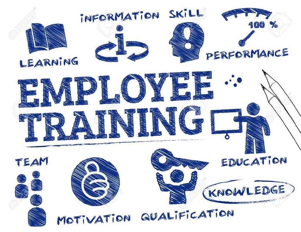 Tầm quan trọng của việc đào tạo và phát triển nhân viên của quản lý nhân sự